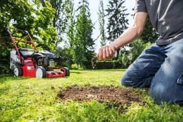 alles ber pflanzen tiere garten und natur sos im vorgarten erste hilfe f r. Black Bedroom Furniture Sets. Home Design Ideas